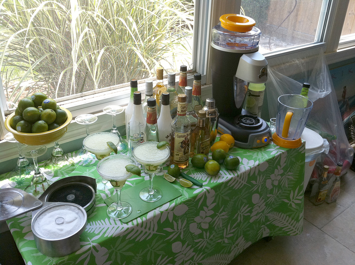 Best Price on Cordless Margarita Machine - DM900